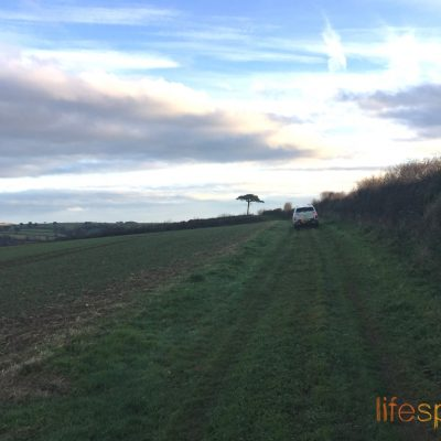 Woodcutters Refuge- Driving through field to cabins site|Life Space Cabins