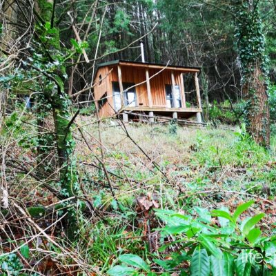 Woodland Foresters Cabin with veranda nestled in the woods in South Devon | Life Space Cabins