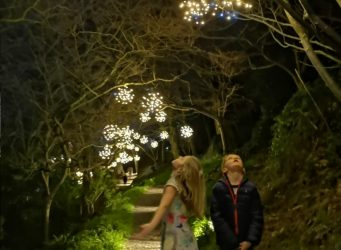 National Trust Star Bursts at Coleton Fishacre  Life Space Cabins
